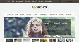 Tema Wordpress ADGRegate - Elegante Templates