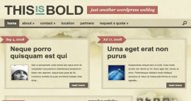 Tema Wordpress Bold - Templates Elegants